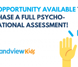New opportunity available to purchase a full psycho-educational assessment